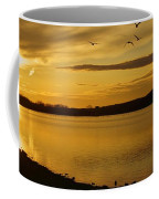 How Many Birds Can You Count? Coffee Mug