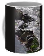 How Many Turtles Coffee Mug