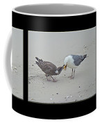How To Eat A Blue Crab - Great Black Backed Gull In Training Coffee Mug