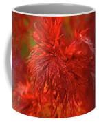Hubble Galaxy With Red Maple Foliage Coffee Mug
