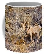 Huge Bighorn Coffee Mug
