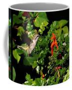 Humming Bird Honeysuckle Coffee Mug