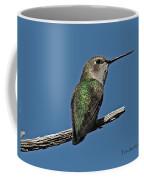 Humming Bird On A Stick Coffee Mug