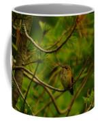 Humming Birds Perched  Coffee Mug