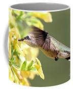 Hummingbird 3725 Coffee Mug