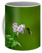 Hummingbird And Lilac Coffee Mug