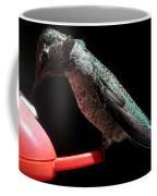 Hummingbird Anna's Eating On Perch Coffee Mug