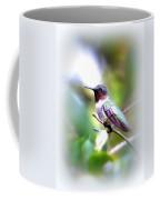 Hummingbird - Beautiful Coffee Mug