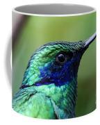 Hummingbird Closeup Coffee Mug