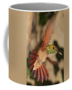 Hummingbird I Coffee Mug