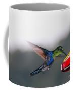 Hummingbird Coffee Mug