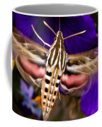 Hummingbird Moth   #8612 Coffee Mug