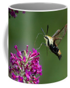 Hummingbird Moth Coffee Mug