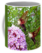 Hummingbird Moths Coffee Mug