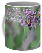 Hummingbird Moths Coffee Mug