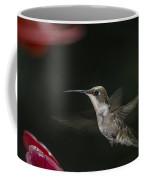 Hummingbird Coffee Mug by Nelson Watkins