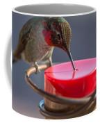 Hummingbird On Feeder Coffee Mug