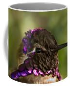Hummingbird Portrait Coffee Mug