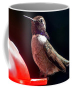 Hummingbird Posing On Perch Coffee Mug