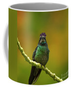 Hummingbird With A Lilac Crown Coffee Mug