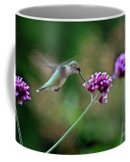Hummingbird With Purple Verbena Coffee Mug
