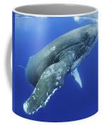Humpback Whale Near Surface Coffee Mug