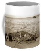 Humpback Whale On A Monterey Beach California  Circa 1896. Coffee Mug