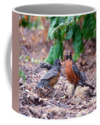 Hungry Baby Robin Coffee Mug
