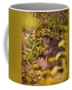 Hungry Beaver Coffee Mug