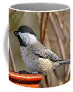 Hungry Chickadee  Coffee Mug
