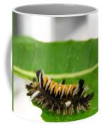Hungry Hairy Caterpillar Coffee Mug