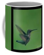 Hungry Little Hummingbird 5 Coffee Mug