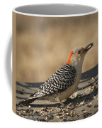 Hungry Red-bellied Woodpecker - Melanerpes Carolinus Coffee Mug