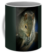 Hungry Squirrel Coffee Mug