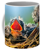 Hungry Tree Swallow Fledgling In Nest Coffee Mug