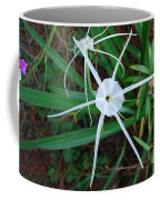 Hurricane Lilly Coffee Mug