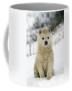 Husky Dog Puppy Coffee Mug
