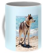 Husky On The Beach Coffee Mug