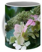 Hydrangea White And Pink I Coffee Mug