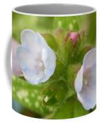 Hydrangeas 2 Coffee Mug