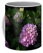 Hydrangeas Vi Coffee Mug