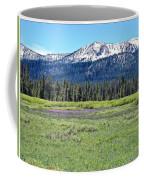 I Break For Wild Flowers Coffee Mug