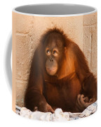 I Didn't Mean To Do It Coffee Mug