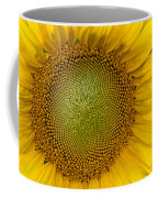 I Got Sunshine Coffee Mug