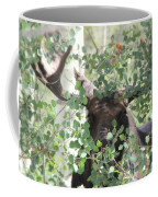 I Have Eyes For You Coffee Mug