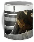 I Have My Eye On First Prize Goat Coffee Mug