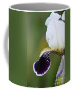 I Spy An Iris Coffee Mug