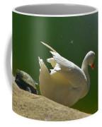 I Think I'll Take A Dip Coffee Mug