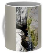 I Will Cherish Your Every Drop Coffee Mug