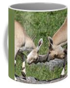 Ibex Doing Battle Coffee Mug